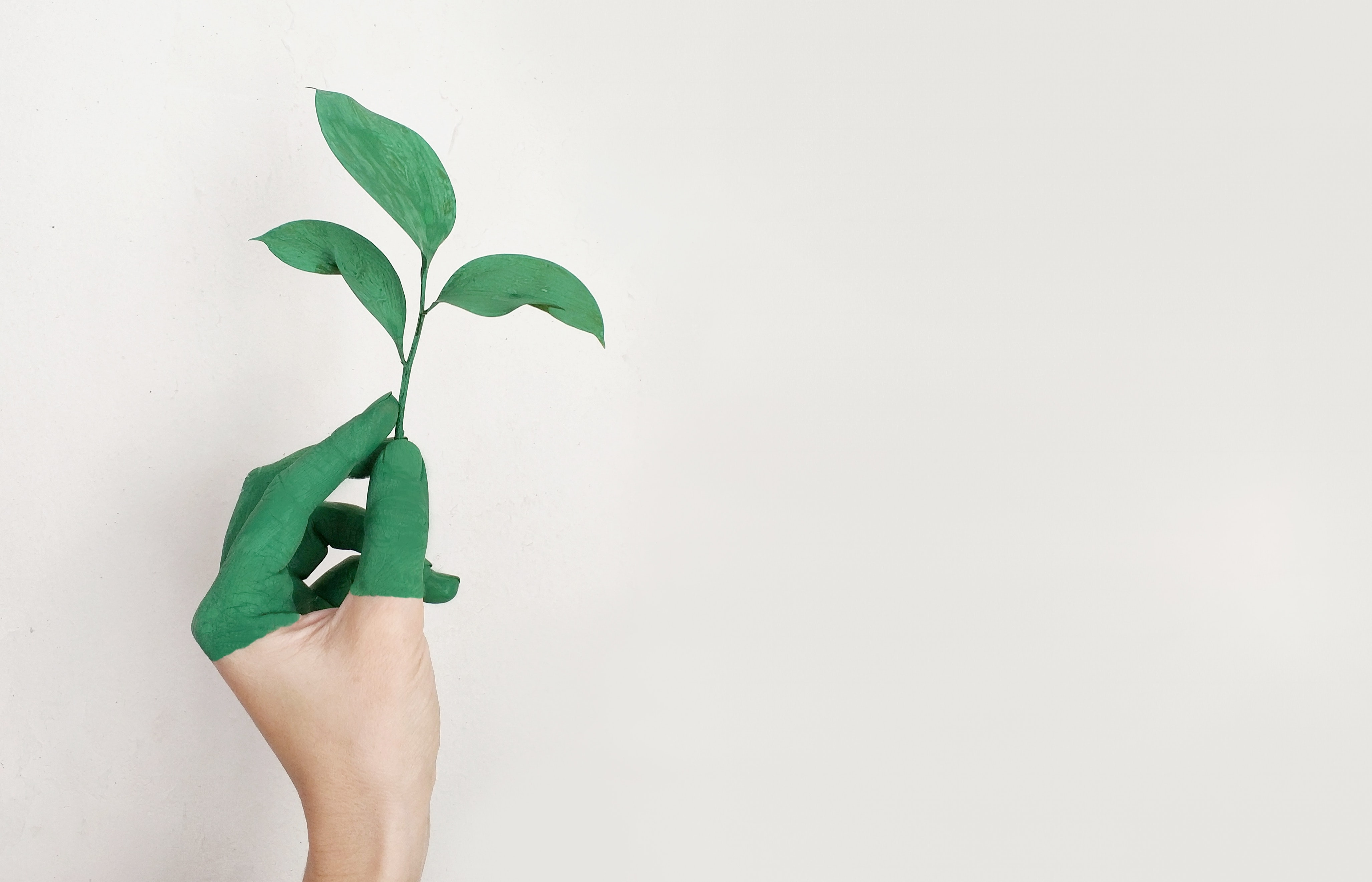 LINEとLINE Ventures投資分析:LINEが目指す世界とは