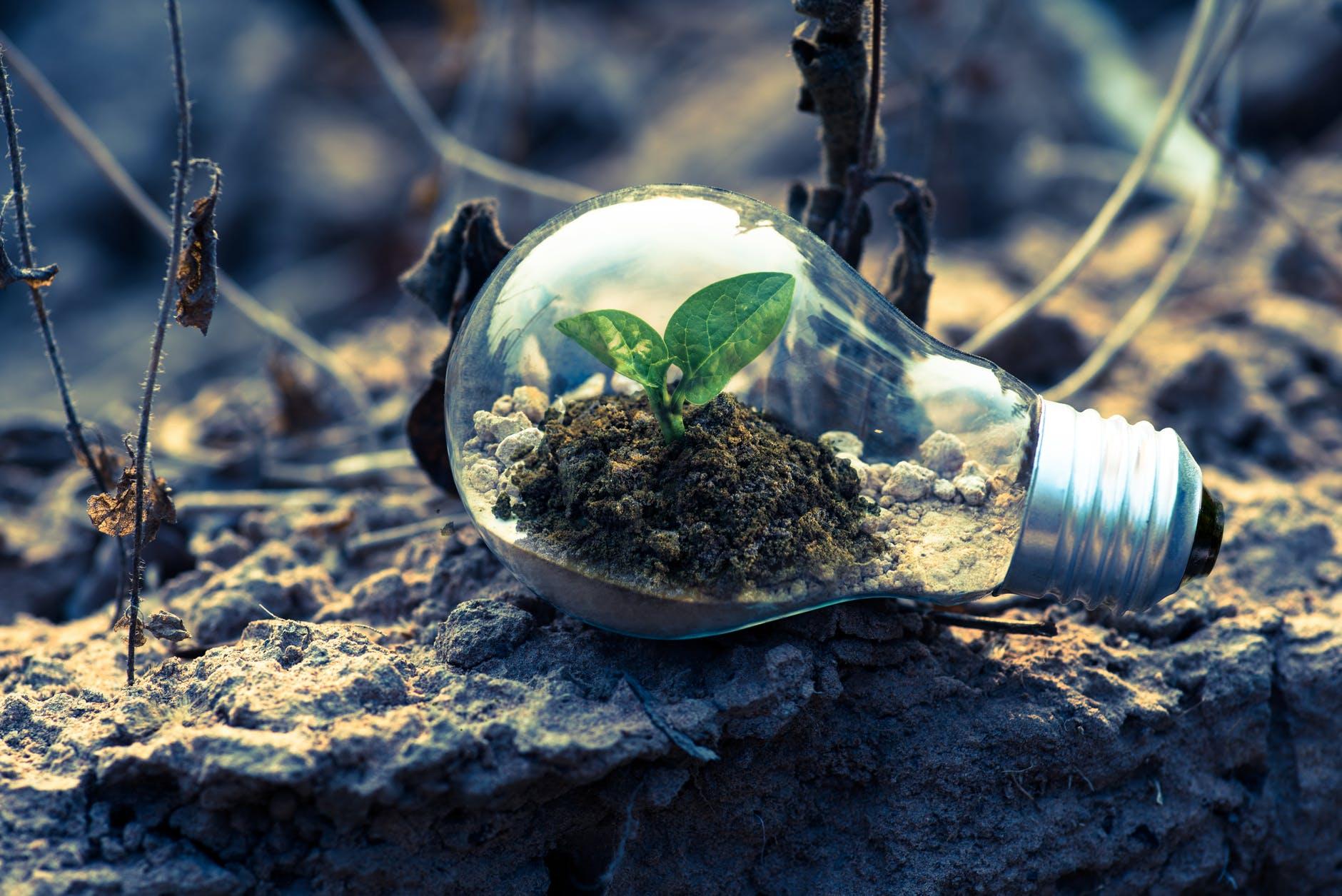 LINEとLINE Ventures投資分析:LINEが目指す世界とは-green